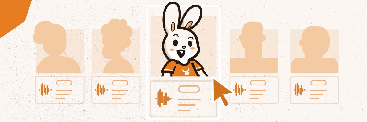 Bunny pro